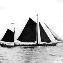 Johanna Engelina op Haringvliet 1907